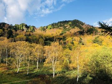 志賀高原石の湯ロッジの紅葉