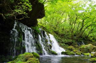 IMGP8983鳥海山元滝
