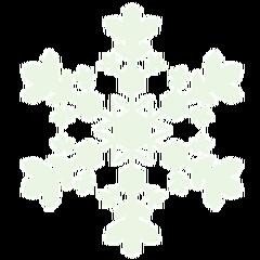 雪の結晶図