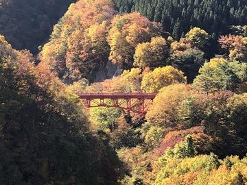 高山村もみじ橋