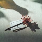 17-03-09-14-52-01-299_deco