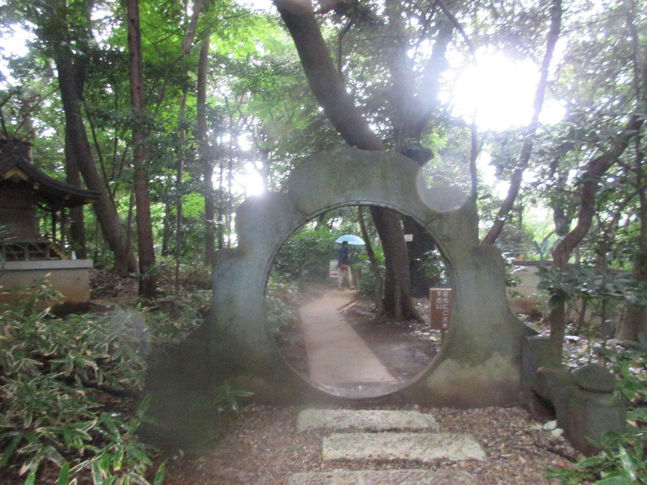 永青文庫2