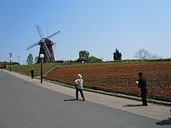 花博・風車2
