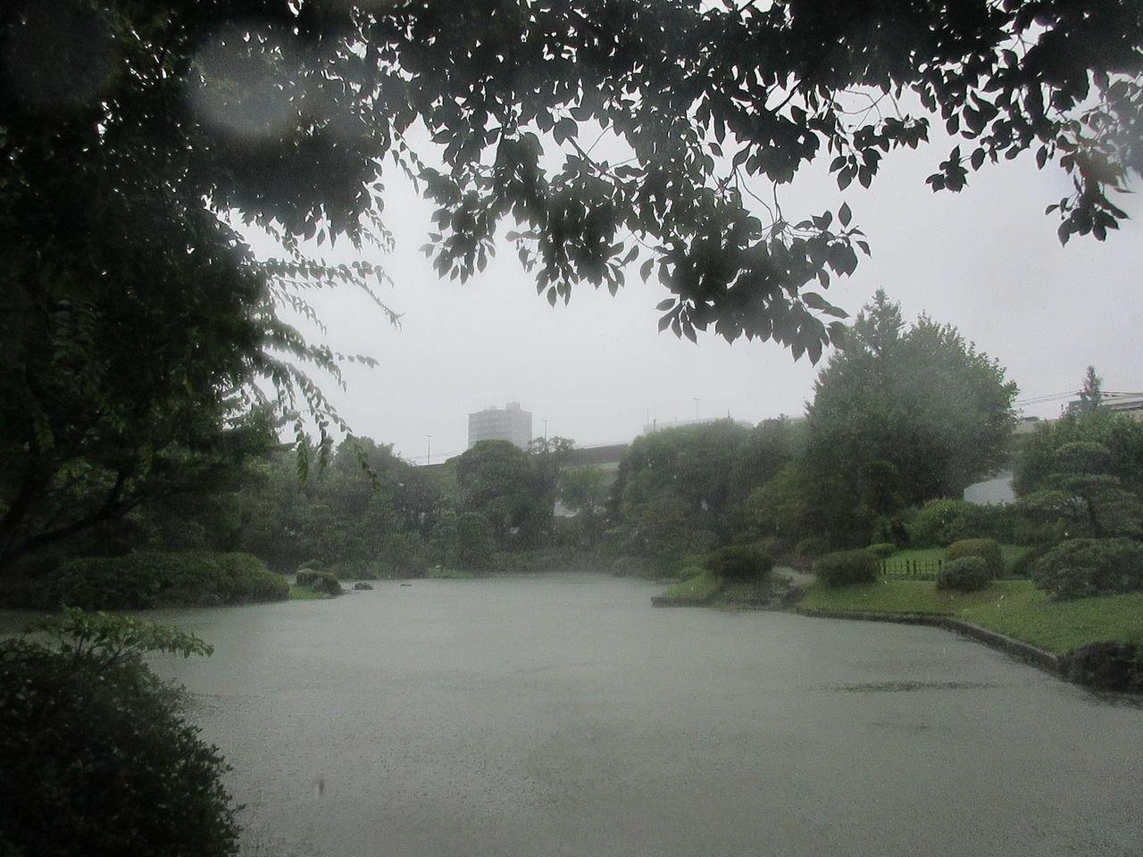 旧安田庭園6