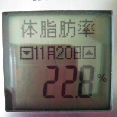 19-11-20-10-06-03-203_photo