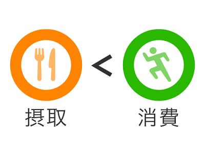 【疑問】本当に「消費㌍ > 摂取㌍」なら痩せるのか???