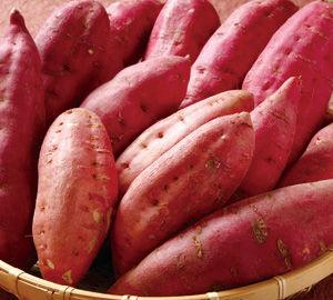 日本のサツマイモの美味さが海外の女性にバレる「美味しくて健康に良いだけでなく茹でるだけで食べられる」