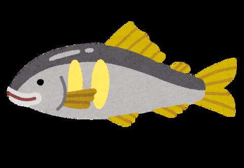 三大・刺身で食べることが珍しい魚wwwwww