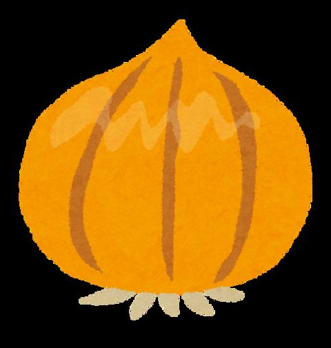 tamanegi_onion (1)