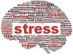 stress-255x195