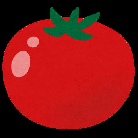 トマトを生で食うやつが信じられないのだが・・・・