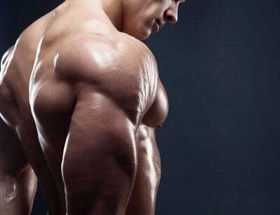 肩幅ないやつが筋トレしても元から肩幅ある奴には負けるという事実wwwww