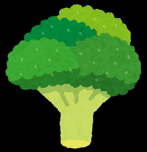 『ブロッコリー』とかいう進んで食うのが筋トレ民しかいない謎の野菜
