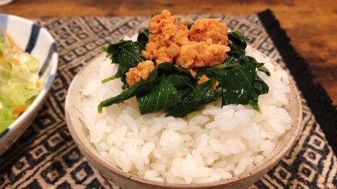 【画像】健康的な昼ごはん作ったから見てwwwww