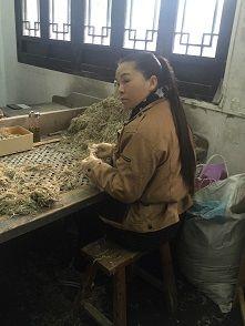 中国旅行19