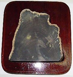 図6)木化石硯