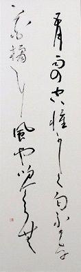 12大井夏子