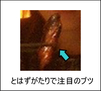 西尾悠里さんをアップにしました