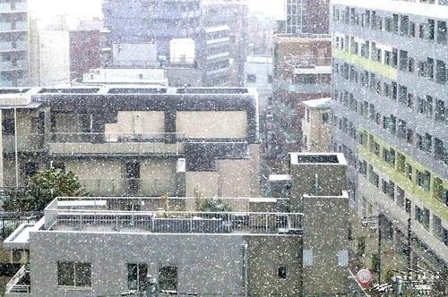 雪16n11g24n04