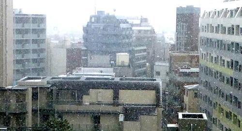 雪16n11g24n03