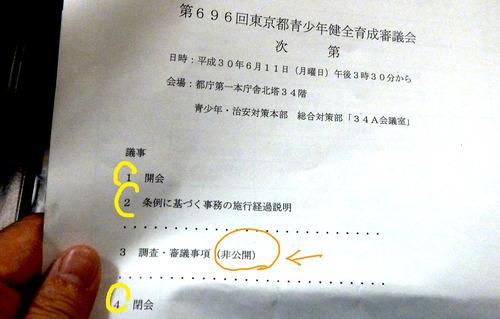 都庁18n6g11n戦少年健全育成審議会
