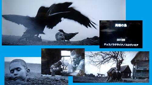 異端の鳥21n9g