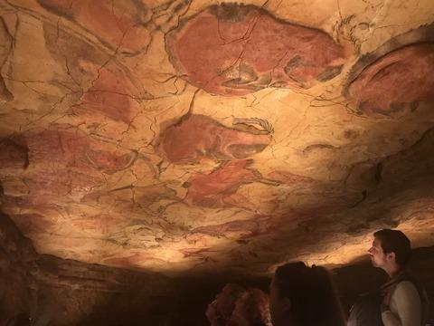 アルタミラ洞窟の画像 p1_17
