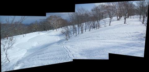 2020_02150012 パノラマ写真