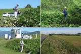 110924 楽しい草刈