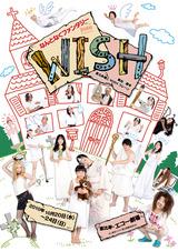dish-wish-flyerA01