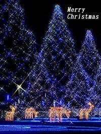 HAPPY MERRY CHRISTMAS♪