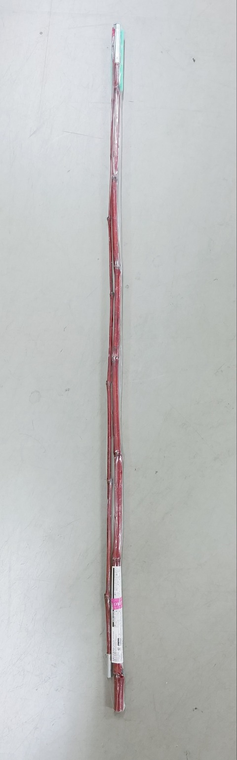 IMG01075-1