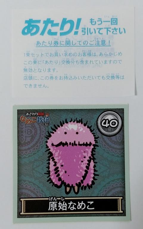 IMG02211(1)