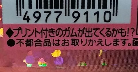 IMG03130~2