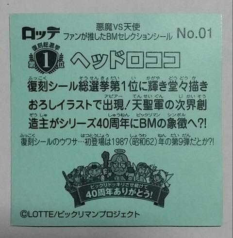 IMG09355-1