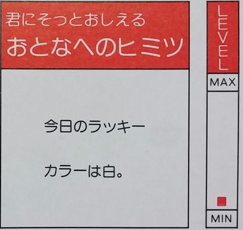 IMG11224-1
