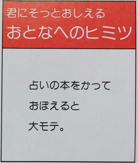 IMG11232-1