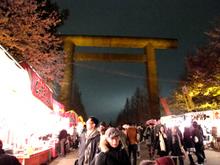 2010sakura 001