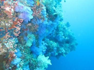 maldives354.jpg