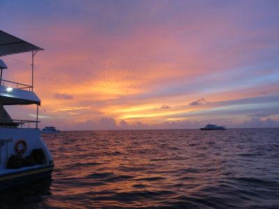 Maldives5d8.jpg