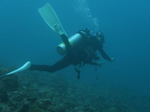 maldives6a6.jpg