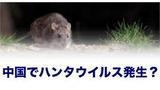 yjimage - 2020-03-29T213933.126