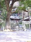 yjimage462SJ306