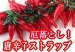 tc4_search_naver_jpCANOVOY0