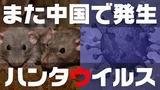 yjimage - 2020-03-29T213926.632