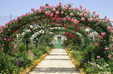 photo_gardenpark