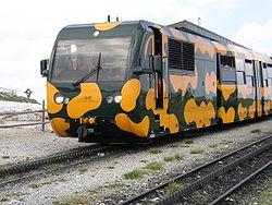 250px-Salamander_train2