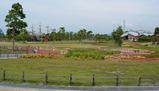 新庄総合公園02