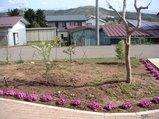 09-04-27_04「その他の庭木と共に」
