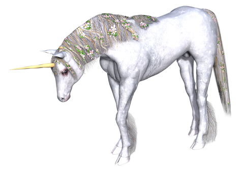 unicorn-2029755_1920